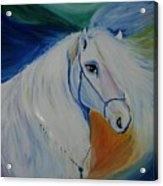 Horse Painting- Knight In Dream Acrylic Print