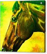 horse portrait PRINCETON yellow green Acrylic Print