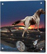 Horse Power Acrylic Print