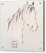 Horse-rest Acrylic Print