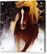 Horse Running In Snow Acrylic Print