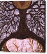 Horse Sleeps Below Tree Of Rebirth Acrylic Print by Carol  Law Conklin