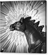 Horse Startled By A Daisy Acrylic Print