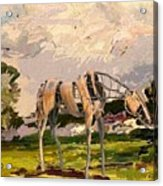 Horse Statue In The Field Acrylic Print