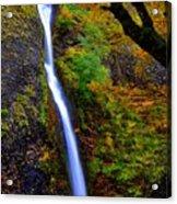 Horse Tail Falls - Autumn  Acrylic Print