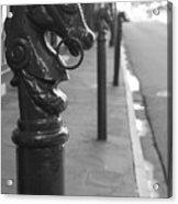 Horse Tie 1 Acrylic Print