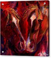 Horse To Horse Nose To Nose Acrylic Print