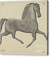 Horse Weather Vane Acrylic Print