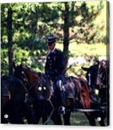 Horses At Arlington Cemetery Acrylic Print