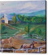 Horses At Gettysburg Acrylic Print