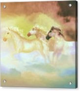 Horses In A Pearly Mist Acrylic Print