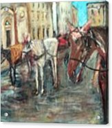 Horses In Florence Acrylic Print