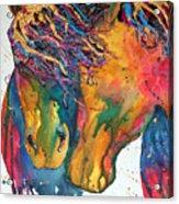Horses In Love Acrylic Print
