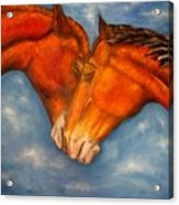 Horses in love.Oil painting Acrylic Print