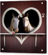 Horses In Stable Acrylic Print
