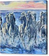 Horses Of The Sea Acrylic Print