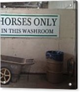 Horses Only Acrylic Print