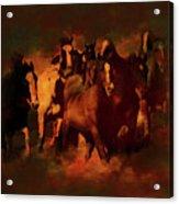 Horses Paintings 34b Acrylic Print