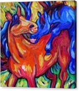 Horses Playing Acrylic Print