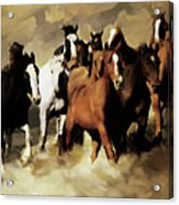 Horses Stampede 091 Acrylic Print
