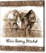 Horses Western Wedding Invitation Getting Hitched Acrylic Print