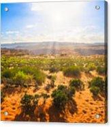Horseshoe Bend Desert Acrylic Print
