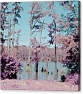 Horseshoe Conservation Area Infrared Acrylic Print