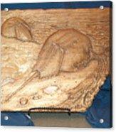 Horseshoe Crabs Acrylic Print by Doris Lindsey