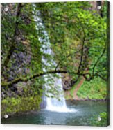 Horsetail Falls, Oregon Acrylic Print