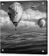 Hot Air Balloons In Black And White Over Fields Acrylic Print