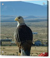 Hot Air Eagle Acrylic Print