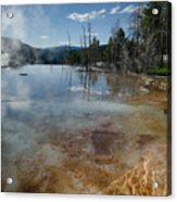 Hot Mammoth Springs Reflection Acrylic Print