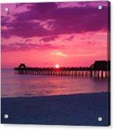 Hot Purple Acrylic Print