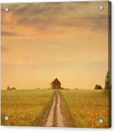 House At The End Of A Track In A Poppy Field Acrylic Print
