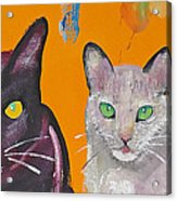 House Cats Acrylic Print