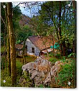 House In China Woods Acrylic Print