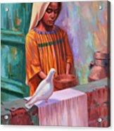House Pigeon Acrylic Print