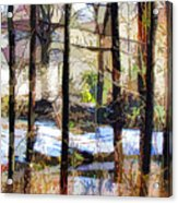 House Surrounded By Trees 2 Acrylic Print