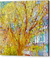 House With White Picket Fence Acrylic Print