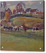 Houses And Cows In Schweiberg Acrylic Print