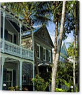 Houses In The Palms  Acrylic Print