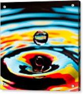 Hover II Acrylic Print