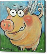 Hovering Pig Acrylic Print