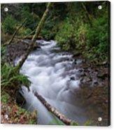 How The River Flows Acrylic Print