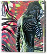 Rising From Ashes Zebra Boy Acrylic Print