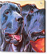 Howy And Iloy Acrylic Print