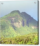 Huahine Forest And Mountaintop Acrylic Print