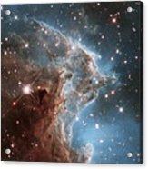 Hubble's 24th Birthday Snap Of Monkey Head Nebula Acrylic Print