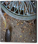 Hubcap And Feather Acrylic Print