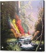 Huckleberry Creek Acrylic Print